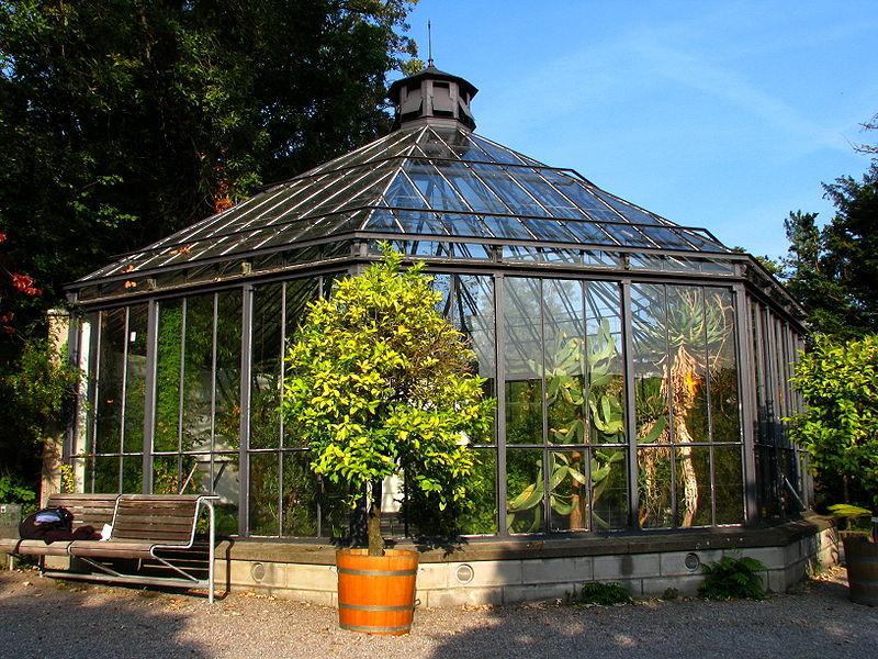 Botanischer garten  UZH - Botanischer Garten - Alter Botanischer Garten