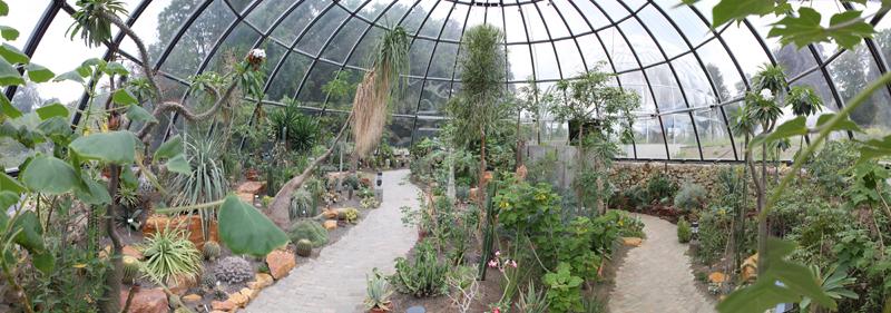 UZH - Botanischer Garten - Tropische Trockengebiete
